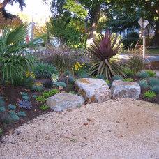 Mediterranean Landscape by Astrid Gaiser Garden Design, LLC