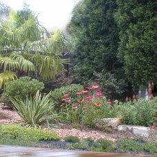 Landscape by Home & Garden Design, Atlanta - Danna Cain, ASLA