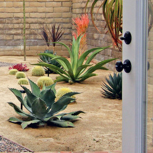 Inspiration for a southwestern drought-tolerant and full sun landscaping in Orange County.