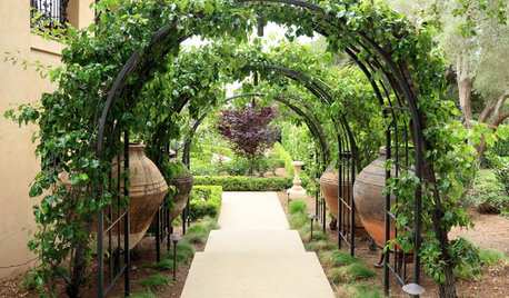 What to Know About Adding a Garden Arbor