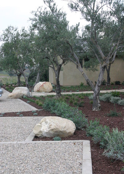 Menu For Olive Garden: Top 10 Plants For Windy Gardens