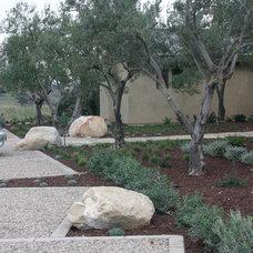 Contemporary Landscape by Carson Douglas Landscape Architecture