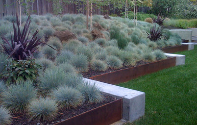 Out-of-the-Box Retaining Wall Ideas