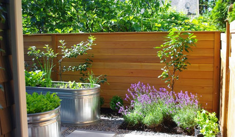 Garden Guides on Houzz Tips From the Experts