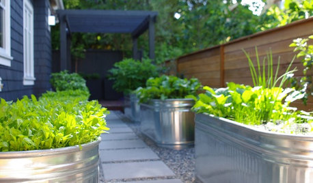 10 Fun Outdoor Projects and Activities to Fill Summer Days