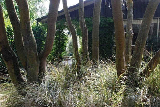Rustic Landscape by Earthwork Landscape Architects
