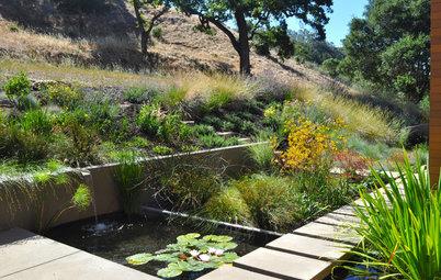 7 astuces de pro pour éviter les inondations dans le jardin