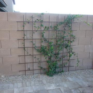 Wall Mounted Trellis w/ Jasmine