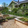 See 6 Yards Transformed by Losing Their Lawns