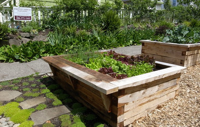 How to Build a Raised Bed for Your Veggies and Plants