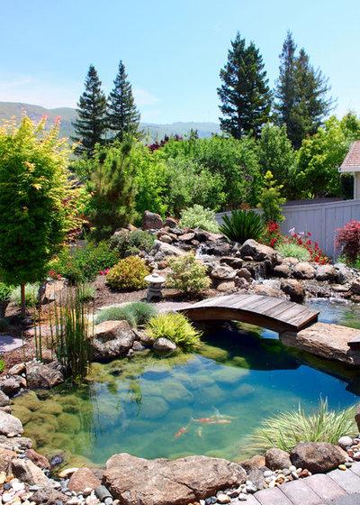 Asiatisch Garten By Ami Saunders, MLA