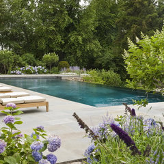 contemporary landscape by Katherine Field and Associates