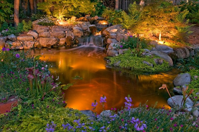 Traditional Landscape by Outdoor Lighting Perspectives - Birmingham, AL