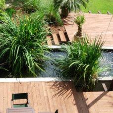 Tropical Landscape by D-CRAIN Design and Construction