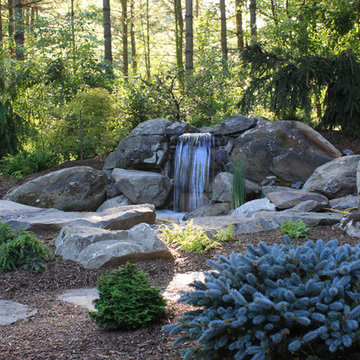 Water Fall and Japanese Garden