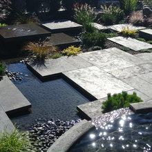 Modern Ponds