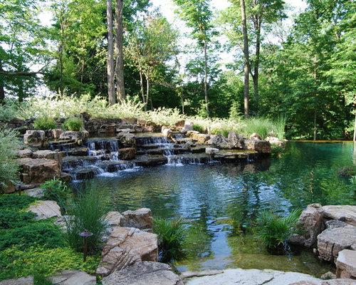 Swimming pond houzz for Michael koi pond