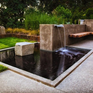 Water Features and Yard