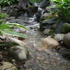 Tropical Landscape by Aquascape Inc.