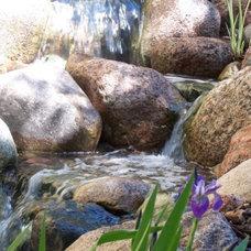 Tropical Landscape by Aquascape Inc.