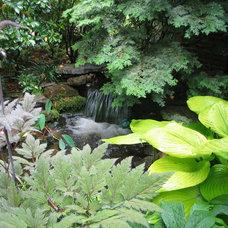Traditional Landscape by Cedar Run Landscapes