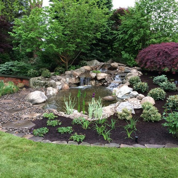 Water Gardens: Pond & Waterfall for Birds & Fish