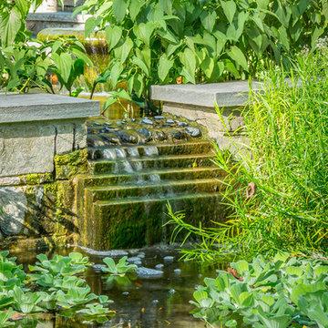 Water-Harvesting Fish Ponds