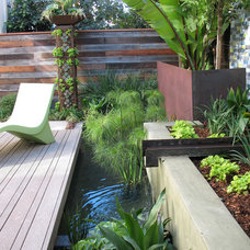 Contemporary Landscape by Arterra Landscape Architects
