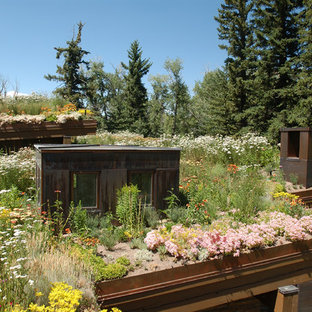 Inspiration for a rustic full sun rooftop landscaping in Denver.