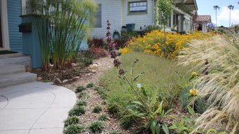 Water Wise Craftsman Home Landscaping