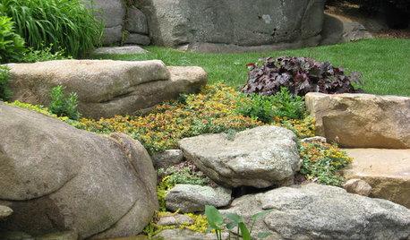 Por qué los jardines de roca son tendencia en 2021