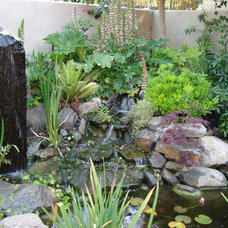 Eclectic Landscape by California Waterscapes