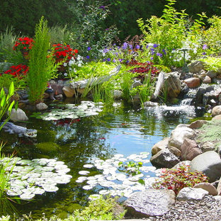 Waterfall Fish Pond, Aquascape Ecosystem Water Garden by Acorn of Rochester, NY
