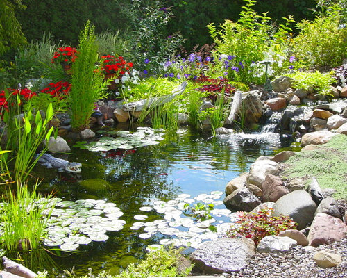 pond landscaping ideas | houzz