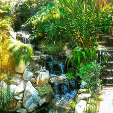 Tropical Landscape by The Grass Is Always Greener Landscape Designs