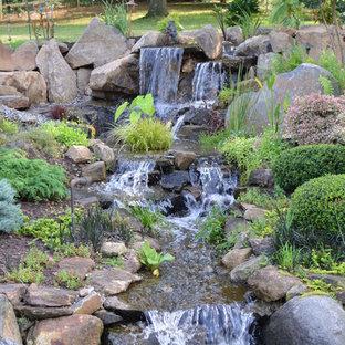 Exempel på en rustik trädgård i full sol, med en fontän