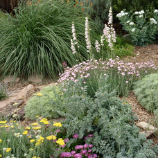 Eclectic Landscape by Waterwise Landscapes Incorporated
