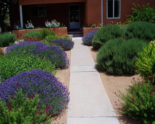 Albuquerque xeriscape houzz for Landscaping rocks albuquerque