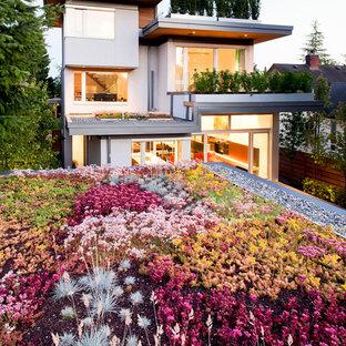 Idee per un giardino contemporaneo esposto in pieno sole sul tetto in primavera