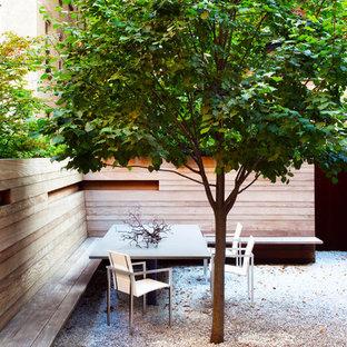 Kleiner, Halbschattiger Moderner Kiesgarten hinter dem Haus, im Sommer mit Kübelpflanzen in New York