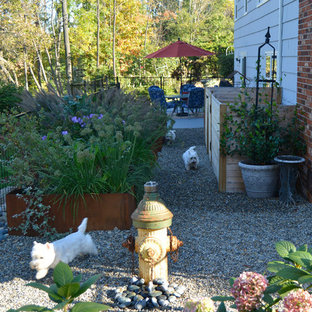Photo of a small transitional partial sun side yard gravel vegetable garden landscape in New York.