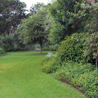 Design ideas for a landscaping in Austin.