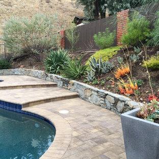 Immagine di un grande giardino mediterraneo esposto in pieno sole dietro casa in estate con pavimentazioni in cemento