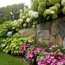 Traditional Landscape by Lynch Landscape and Tree Service, Inc.