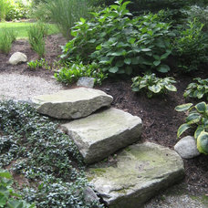 Eclectic Landscape by Timothy Sheehan, ASLA