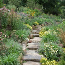 Contemporary Landscape by Westover Landscape Design, Inc.