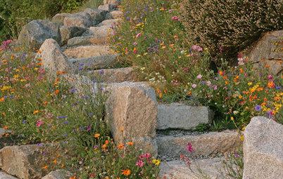 1000 Idee Per Il Giardino : Le regole base per progettare un giardino