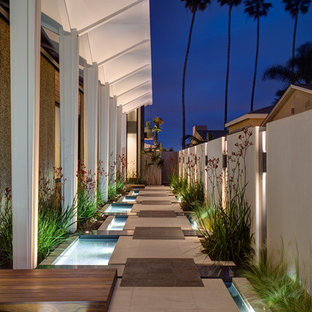 This is an example of a contemporary side yard pond in San Diego.