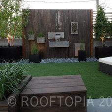 Modern Landscape by Rooftopia, LLC