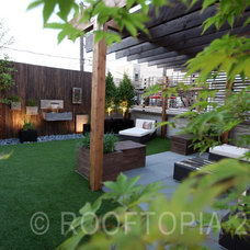 Modern  by Rooftopia, LLC